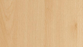 D9201-PR-Buk-mangfall-jasny-0_decor_line